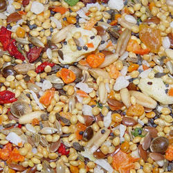 Higgins Small Fruit and Veggie Seed Mix